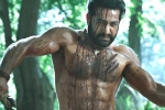 Ramaraju for Bheem: NTR's Deadly Transformation as Komaram Bheem